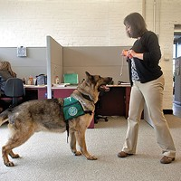 Tammi Potts training Gryffin at Center for Victims