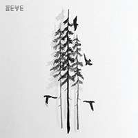 New Local Releases: Zeve