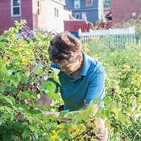 Jana Thompson in Olde Allegheny Community Garden