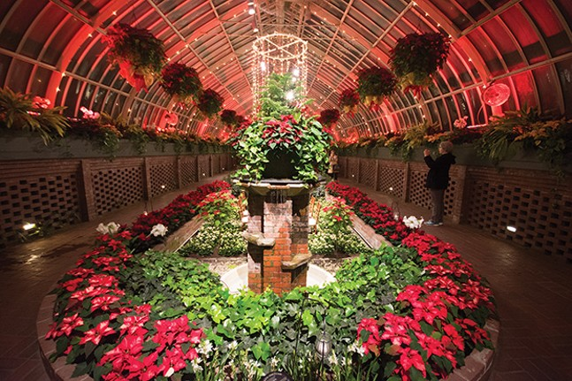 Phipps Conservatory's annual winter flower and light show - CP FILE PHOTO