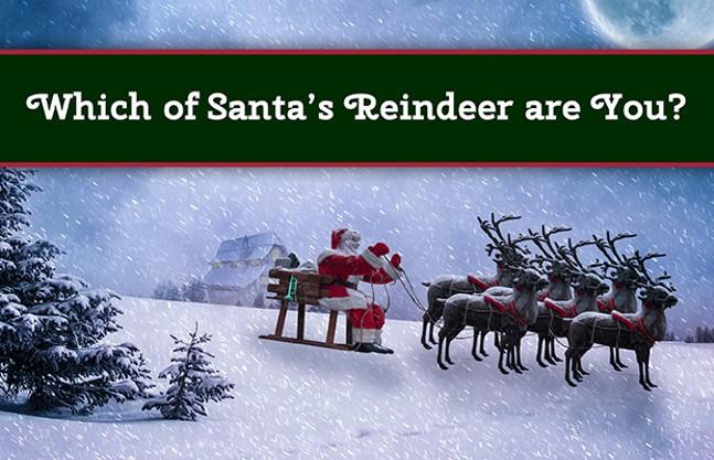 reindeer_header2.jpg