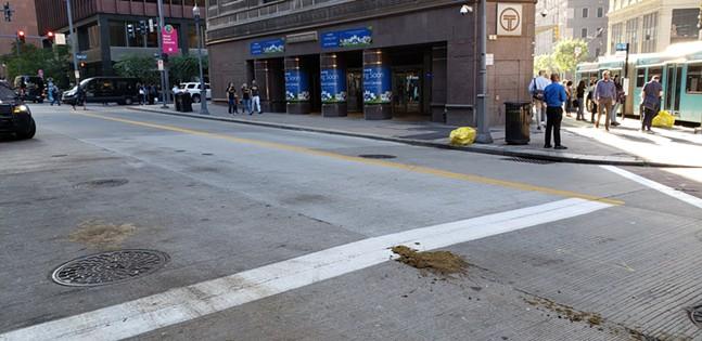 Horse shit outside of Wood St. Station. - CP PHOTO: JOSH OSWALD
