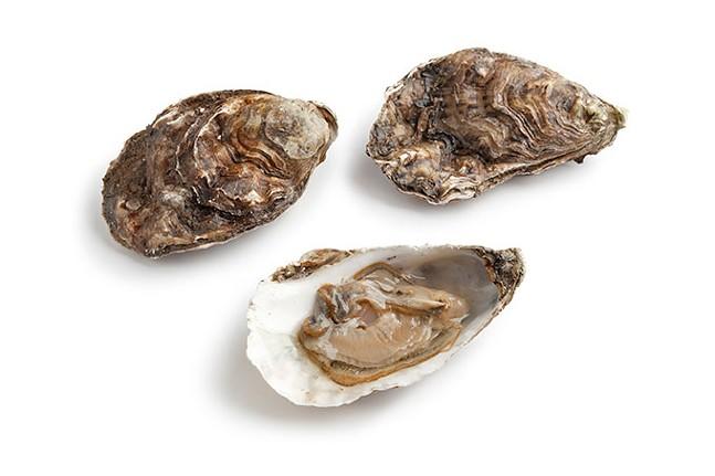 peep-oysters-44.jpg