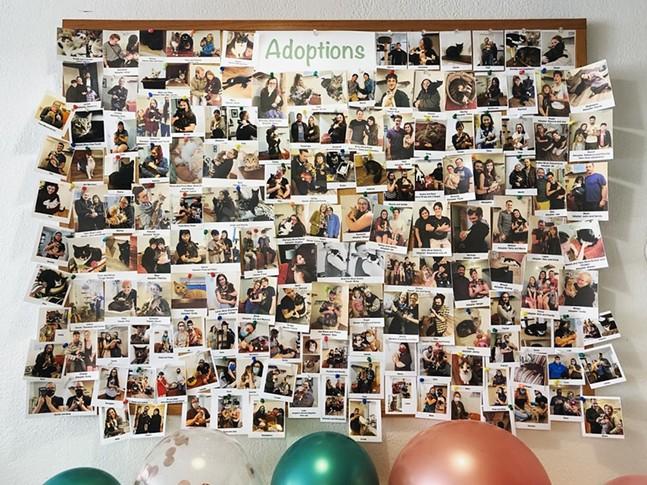 Black Cat Market adoption board - PHOTO BY BLACK CAT MARKET