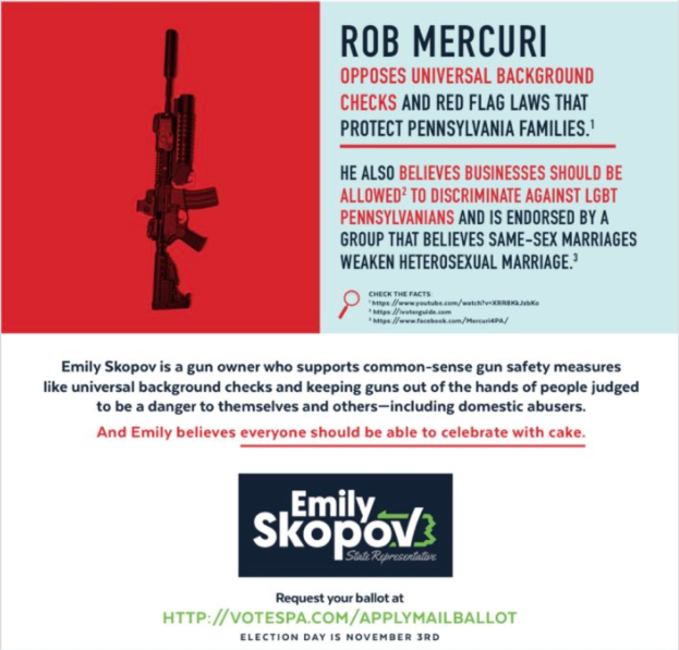 Mailers sent out today attacking Rob Mercuri and his support for LGBTQ discrimination - COURTESY THE SKOPOV CAMPAIGN