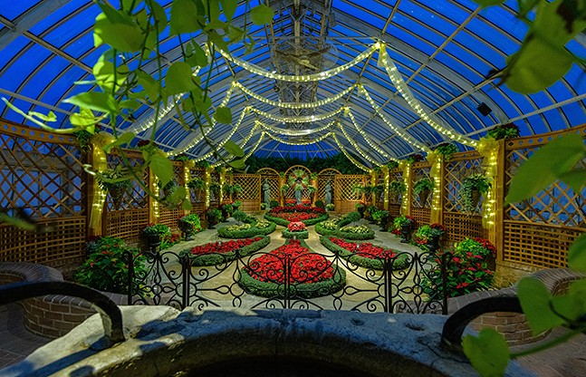 The Winter Flower Show at Phipps Conservatory (see   Mon., Nov. 23) - PHOTO: PAUL G. WIEGMAN