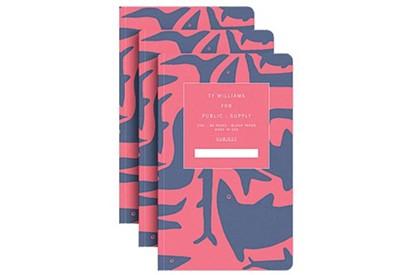 stuff-public-notebooks.jpg