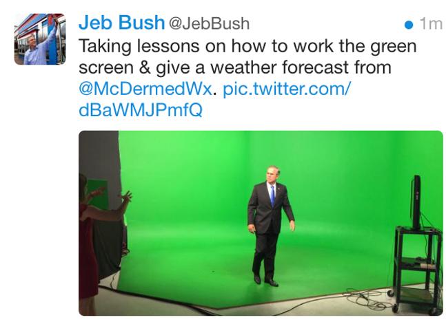 tweet_jeb_green.png