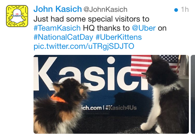 kasich_cats.png