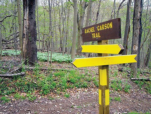 Trail sign marking the path of the 34-mile Rachel Carson Trail, which spans most of northern Allegheny County - PHOTO COURTESY OF DONNA STOLZ