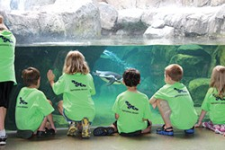 National Aviary Camps, June 20-Aug. 5 - PHOTO COURTESY OF NATIONAL AVIARY