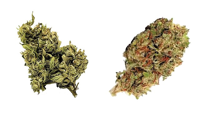 Sour G CBG Flower from Penn's Choice (left), CBD Hemp Flower from Total Peace and Wellness (right)