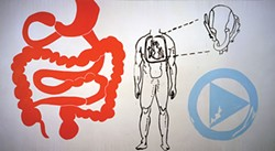 "Andy Warhol's ""Physiological Diagram"" (1985), in Andy Warhol: My Perfect Body, Oct. 21 at The Andy Warhol Museum - IMAGE COURTESY OF THE ANDY WARHOL MUSEUM"