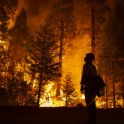 "A forest fire rages in ""Extreme Weather"""