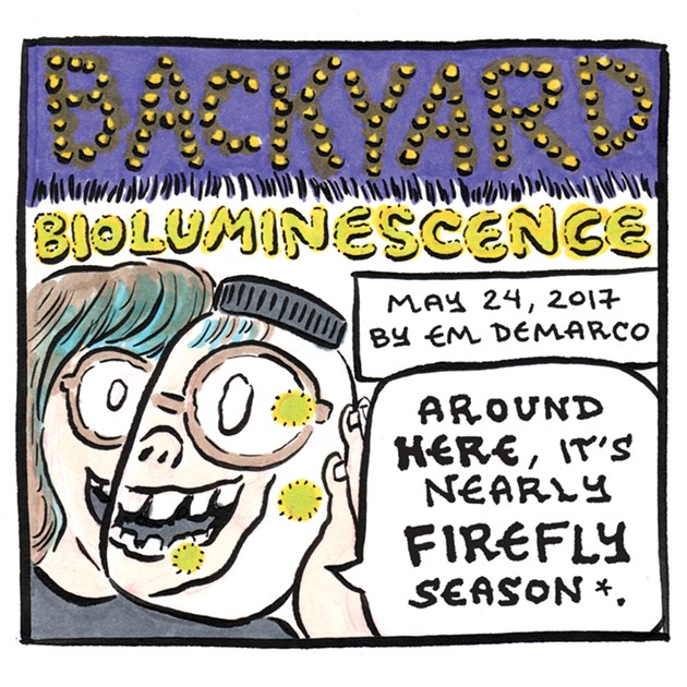 hed_fireflies_emdemarco_comic_for_web_930px.jpg