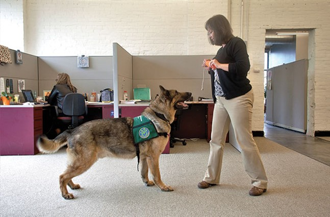 Tammi Potts training Gryffin at Center for Victims - CP PHOTO BY JORDAN MILLER