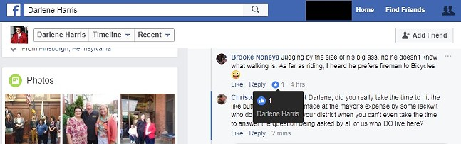 Darlene Harris liking a post with an apparent homophobic joke towards Bill Peduto. - IMAGE COURTESY OF FACEBOOK