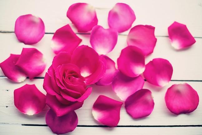 rose-petals-2249397_960_720.jpg