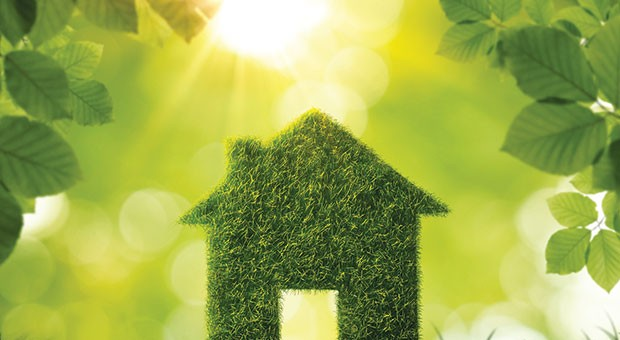 "Why can't local homeowners include ""green"" attributes in real-estate listings?"
