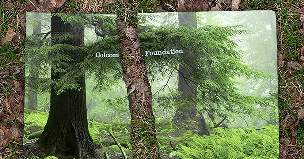 Colcom Foundation dropped by wealth-management firm following <i>NYT</i> report