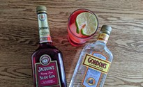 The fascinating history, harvesting, and characteristics of sloe gin