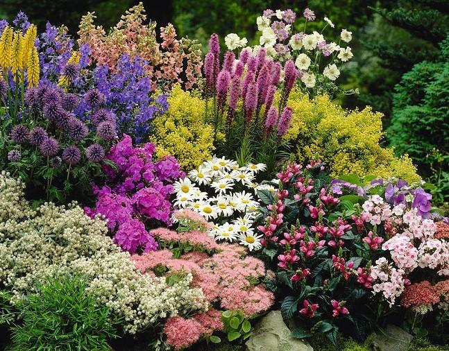 awesome-perennial-garden-design_72549.1484595075.jpg