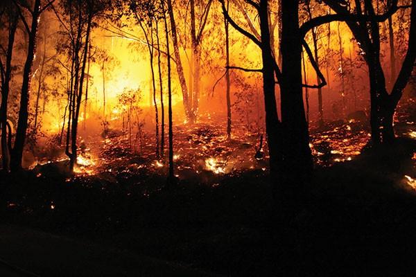 green-light-wildfire.jpg
