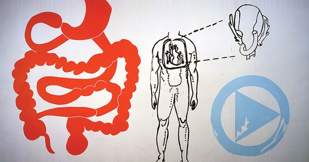 "Andy Warhol's ""Physiological Diagram"" (1985)"