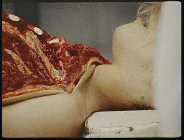 """Stan Brakhage's """"The Act of Seeing With One's Own Eyes"""""""