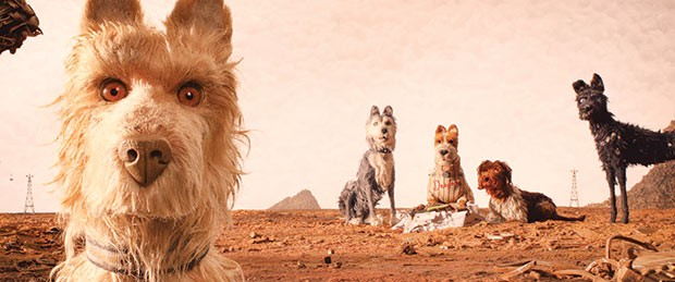 The dogs of Trash Island