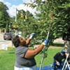 Volunteer Lataya Johnson, of McKees Rocks, uses a fruit-picking tool to harvest crabapples for Hidden Harvest in Mellon Park.