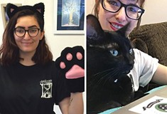Purrfect Business: Pittsburgh getting ready for its first cat café