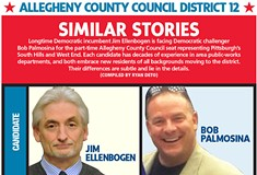 Allegheny County Council District 12
