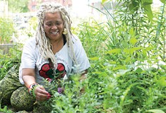 Community Gardens grow so much more than food