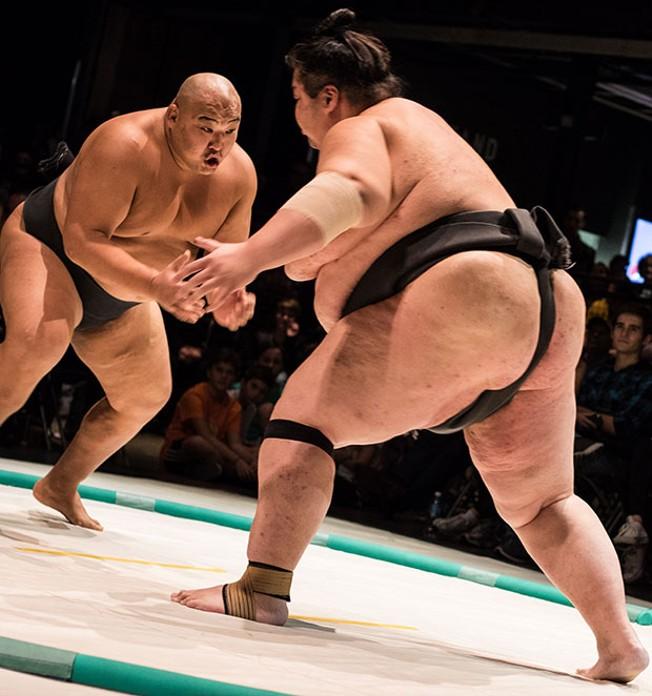 Twink sumo wrestler photos, megan fox nude tied