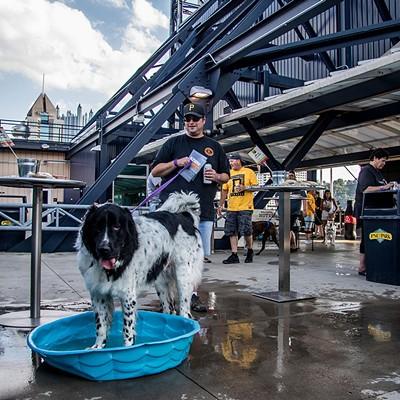 Pittsburgh Pirates Pup Night