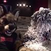 City Paper talks to 'Fursonas' director, Boomer the Dog