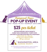 Pampered Paws Pop-Up Event for The Washington Area Humane Society - Uploaded by WAHS2019