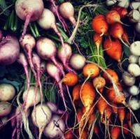 Lawrenceville Farmers Market - Uploaded by Darrell Kinsel
