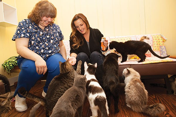 Veterinarian Becky Morrow, left, and animal activist Margo Cicci with several rescue cats
