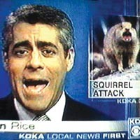 When Good Squirrels Go Bad