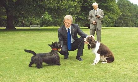 White House dog days: George W. Bush (Josh Brolin) and Karl Rove (Toby Jones)