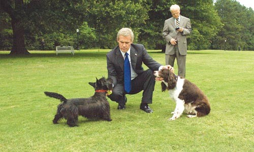 White House dog days: George W. Bush (Josh Brolin) and Karl Rove (Toby Jones)