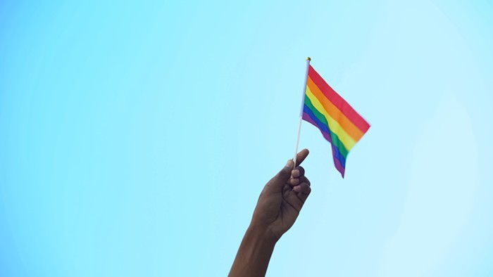 LGBTQ+ people are easy to spot, because were required by law to always be waving this flag!