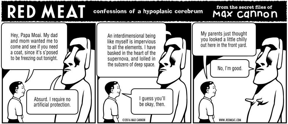 confessions of a hypoplasic cerebrum