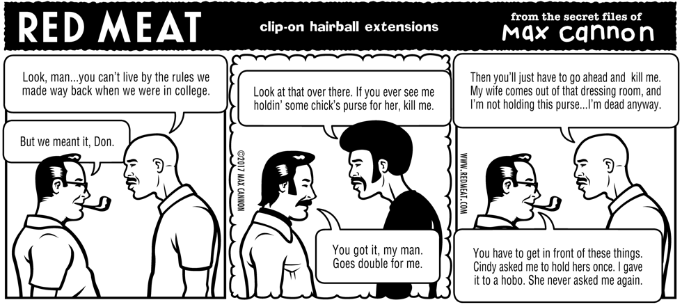 clip-on hairball extensions