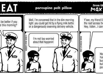 porcupine pelt pillow