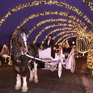RIP King the Clydesdale: Tilles Park Winter Wonderland Carriage Horse Dies During Ride