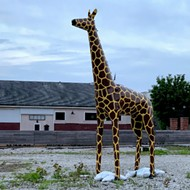 Who's the Son of a Bitch Who Stole Civil Life's Giraffe?