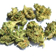 Dispensary Review: Tommy Chims Smokes High Profile's Weed